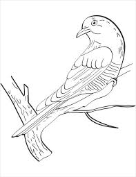 bird coloring page 8 bird coloring pages jpg ai illustrator download free