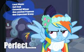 Mlp Rainbow Dash Meme - 29844 meme rainbow dash random rapeface safe derpibooru