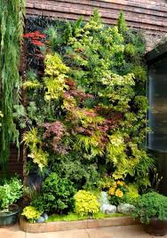 Vertical Garden Eye Catching Vertical Gardens That Can Beautify Any Plain Wall