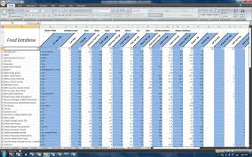 Time Tracker Spreadsheet Team Beachbody U2013 Nutrition And P90x Spreadsheet U2013 Makes Dieting
