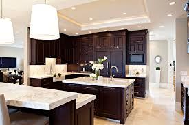 spectacular espresso kitchen cabinets delectable decoration paint
