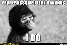 Monkey Meme Generator - stereotype monkey meme generator captionator caption
