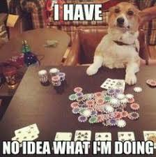 Poker Memes - 7 best poker meme images on pinterest poker memes humour and