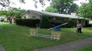 backyard dog agility front cross advanced exercise youtube