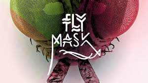 Real Looking Halloween Masks Diy How To Make A Fly Insect Mask Youtube