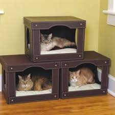 Decorative Cat Box Items For Cats Pampered Paw Gifts