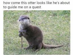Otter Memes - good day sir meme otter social media la