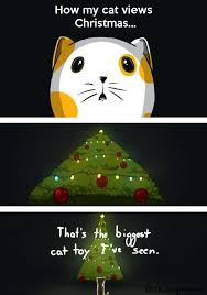 Cute Christmas Meme - cats and christmas cat pictures
