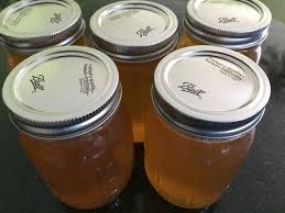 Home Joys by The Joys And Adventure Of Home Brewed Kombucha Tea Holistic
