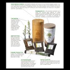 grow a tree from ashes biodegradable urn memorial gallery