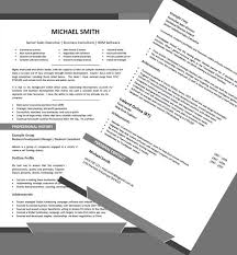 executive resume writing services reviews Sveti  te Gospe Sinjske We can help with professional resume writing resume templates Executive Resume and Cover Letter