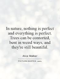 tree quotes gallery wallpapersin4k net