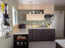 Small L Shaped Kitchen Design Small L Shaped Kitchen Designs Coexist Decors Adorable Popular