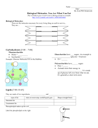 How The Earth Was Made Worksheet Answers Biological Molecules You Are What You Eat Homework Assignment