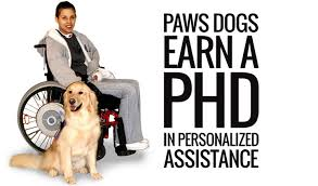 Dogs Helping Blind People Assistance Dogs Paws With A Cause