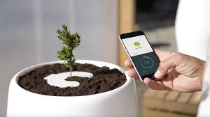 bios urn meet the bios incube the app controlled urn accessory that grows