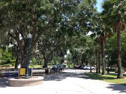 shady trees at gilbert park in mount fl picture of