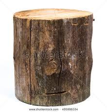 wood log isolated on white background stock photo 495996334
