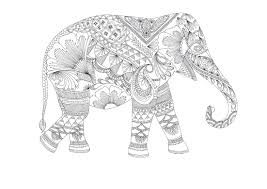 animals coloring pages for adults to download and print for free