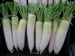 Chinese Root Vegetables - chinese fruits u0026 vegetables you u0027ve never heard of