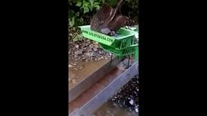 homemade gold trommel design gold fox trommel on a goldhog mini youtube