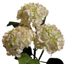 silk hydrangea artificial silk white hydrangeas your own bouquet pyob