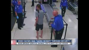 Flight Attendant Jobs In Columbus Ohio Update Video Released Of Monkey On Plane Ktnv Com Las Vegas