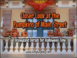 closer look at the pumpkins of main street ladybug blog