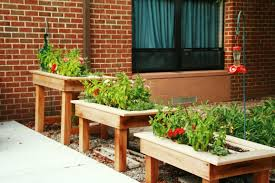 how to build raised planter boxes
