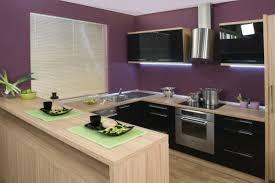 peinture cuisine couleurs de cuisine tendance couleur cuisine beau stock