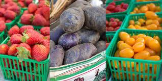 vegetarianism and the low fodmap diet u2013 lauren renlund mph rd