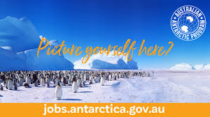 bartender resume template australia news canberra weather accu jobs in antarctica australian antarctic division