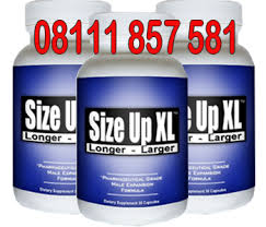 jual size up xl