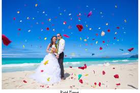Oahu Photographers Oahu Photographers Wedding Engagement Family Photographer In