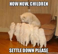 Settle Down Meme - now now children settle down please storytelling dog make a meme