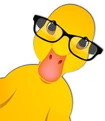 office ducks we get your ducks in a row
