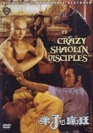 crazy shaolin disciples hong kong kung fu martial arts action