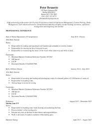 professional chronological resume sample professional resumes