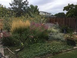 family garden longmont outstanding habitat hero residential gardens part ii audubon