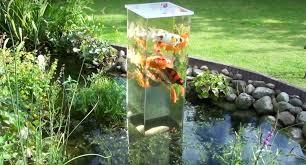 afbeeldingsresultaat voor inverted aquarium my new yard
