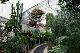 Belfast Botanical Gardens by File Inside Palm House Jpg Wikimedia Commons