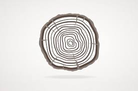 vector tree rings flat design objects creative market