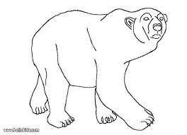 polar bears coloring pages hellokids