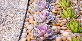 Zen Garden Design Zen Garden Design Ideas