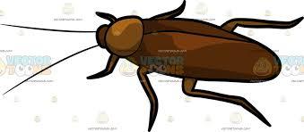 regular cockroach cartoon clipart vector toons