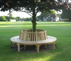 tree bench wrap around kit metal benches uk porch swing