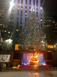 a new york christmas i have cat