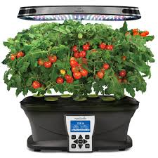 amazon com aerogarden red heirloom cherry tomato seed pod kit 7