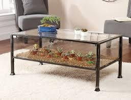 living room rectangular metal and glass terrarium coffee table