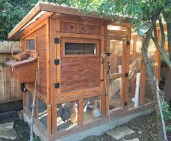 le chez poulet backyard chickens